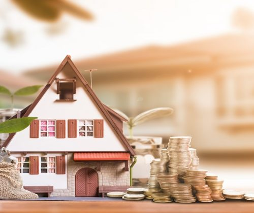 Real Estate & Investment Vehicles